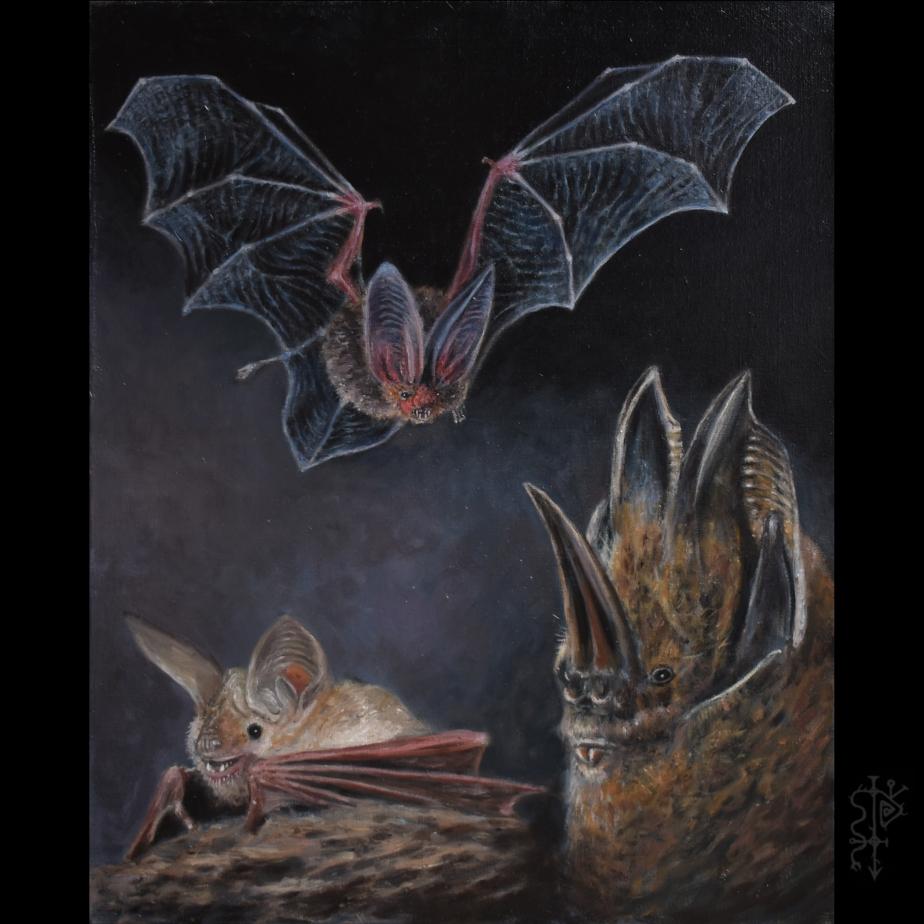 batfriends2